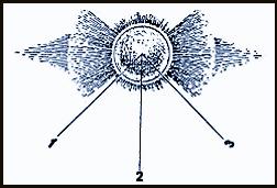 digr4.jpg